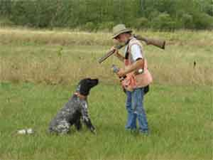 Ed Erickson, owner of Autumn Breeze Kennel, training a gun dog at Autumn Breeze Kennel.